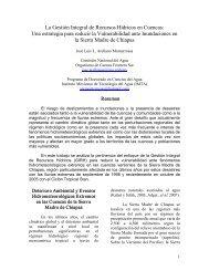 La Gestión Integral de Recursos Hídricos en Cuencas - Instituto ...