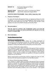 Scrutiny Work Programme - March 2008 - September 2009