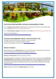 Nylands landskapsbibliotek informerar 1 / 2013 - Porvoo