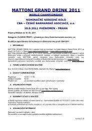 MATTONI GRAND DRINK 2011 - Česká barmanská asociace