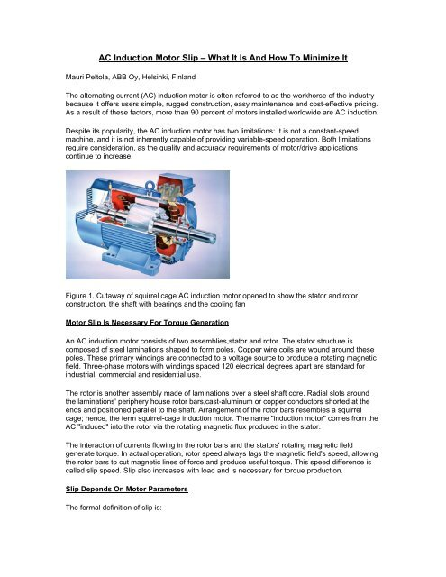 Induction motor cage applications squirrel Squirrel cage