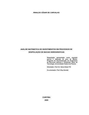 Análise Matemática de Investimentos em processos de Despoluição ...