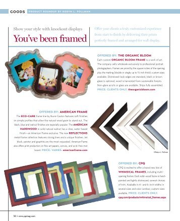Frames - Professional Photographer Magazine