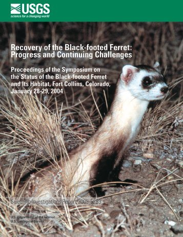 Recovery of the Black-footed Ferret - Prairie Wildlife Research