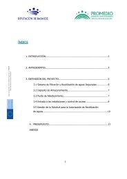 Proyecto Filtro Llerena Promedio.pdf - Premio Conama