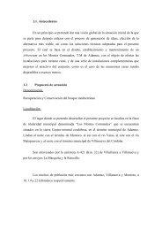 1.1. Antecedentes En un principio se pretende dar ... - Premio Conama
