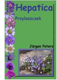 Buch-Script_polnisch mit Bilder