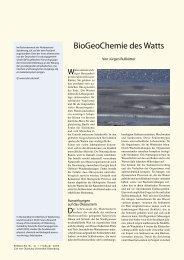 BioGeoChemie des Watts - Universität Oldenburg