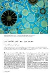 Die Vielfalt zwischen den Arten - Universität Oldenburg