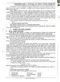 Vizualizare PDF - Primaria Municipiului Arad - Page 7
