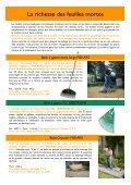 Travaux d'automne et d'hiver au jardin - Primavera - Page 2