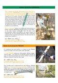 Travaux d'automne et d'hiver au jardin - Primavera - Page 4