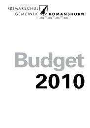 Budget in pdf-Format - Primarschulgemeinde Romanshorn