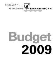 Budget 2009 - Primarschulgemeinde Romanshorn