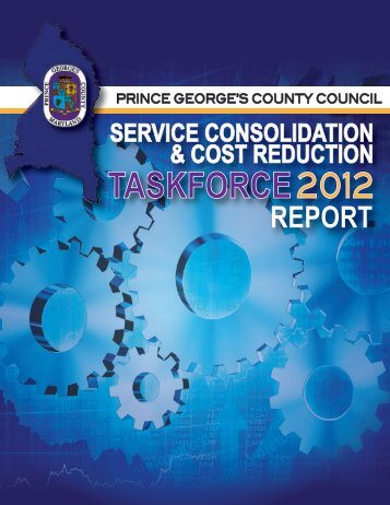 Service Consolidation Report - Prince George's County