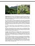 WILLKOMMEN IN MAROJEJY UND ANJANAHARIBE-SUD - Priori - Page 6