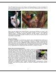 WILLKOMMEN IN MAROJEJY UND ANJANAHARIBE-SUD - Priori - Page 7