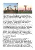 Von Belo-sur-Tsiribihina durch den Kirindy-Wald und entlang ... - Priori - Page 4