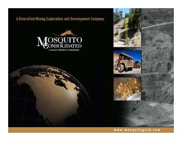 Mosquito Consolidated Gold Mines One2One Investor Presentation 11