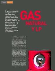 60-63 gas LP y Natural OKMM - Profeco