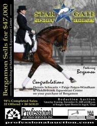 PDF Version - Professional Auction Services, Inc.