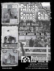 Download - Professional Auction Services, Inc.