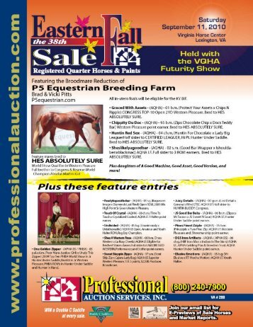Cover 2 - Professional Auction Services, Inc.