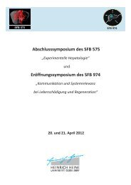 Programm Symposium SFB 20.+21... - Profil-research.de