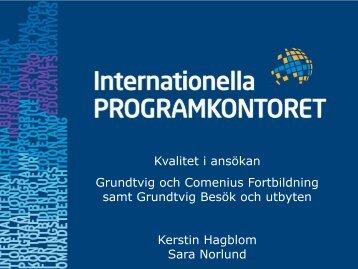 Information inför ansökan: fortbildning och besök och utbyten (pdf)