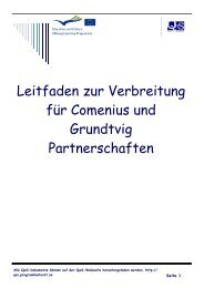Leitfaden zur Verbreitung für Comenius und Grundtvig Partnerschaften