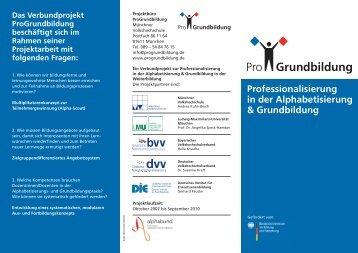 Professionalisierung in der Alphabetisierung ... - ProGrundbildung