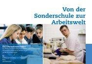 Von der Sonderschule zur Arbeitswelt - Pro Infirmis