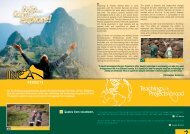 Inca & Archaeology Project Profile - Projects Abroad