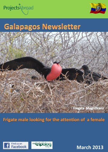 2,17MB Ecuador Newsletter - March 2013 - Projects Abroad