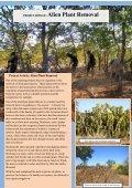 Bush Telegraph - Projects Abroad - Page 5