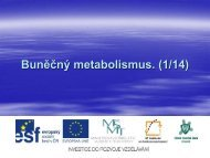 Buněčný metabolismus. (1/14) - Projekt EU