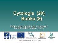 Buňka jako základní živá soustava, hlavní funkce buňky ... - Projekt EU