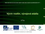 Vývin rostlin, vývojová stádia - Projekt EU