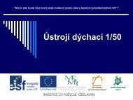 Ústrojí dýchací 1/49 - Projekt EU