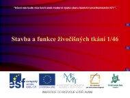Stavba a funkce živočišných tkání 1/46 - Projekt EU