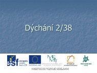 Dýchání 2/38 - Projekt EU