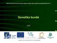 Genetika buněk - Projekt EU