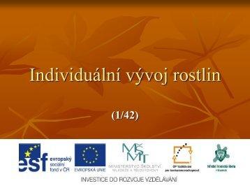 Individuální vývoj rostlin - Projekt EU