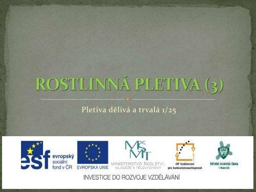 Rostlinná pletiva - Projekt EU