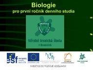 Biologie rozpis - Projekt EU