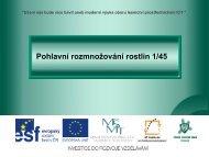Pohlavní rozmnožování rostlin - Projekt EU