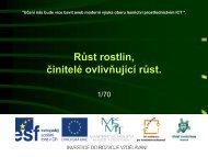 Růst rostlin, činitelé ovlivňující růst. - Projekt EU