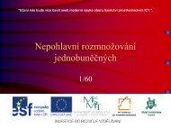 Nepohlavní rozmnožování jednobuněčných - Projekt EU