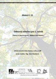 Blätter und Nadeln - Projekt EU
