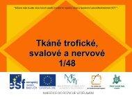 Tkáně trofické, svalové a nervové - Projekt EU